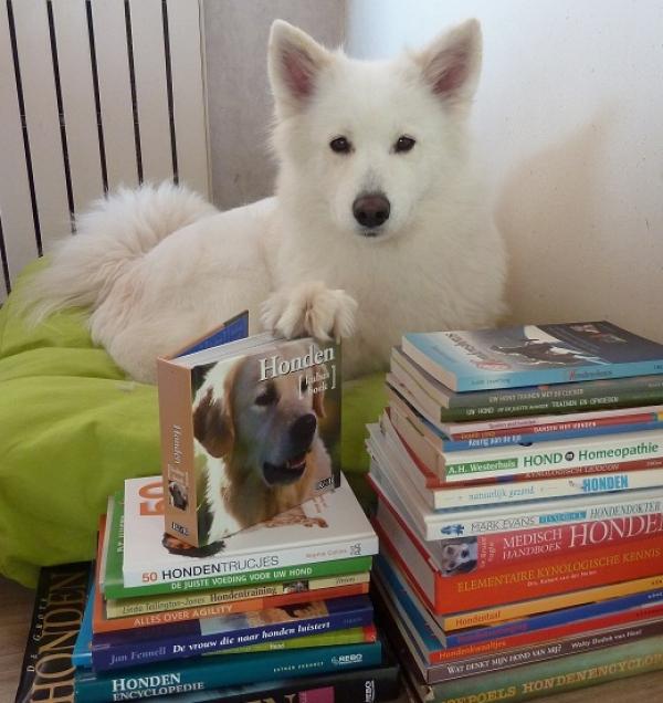 brumma met boeken 2